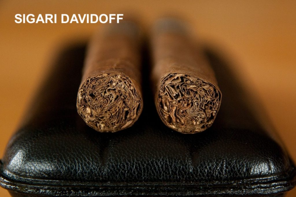 Tabaccheria di Venere Mola di Bari sigari 3